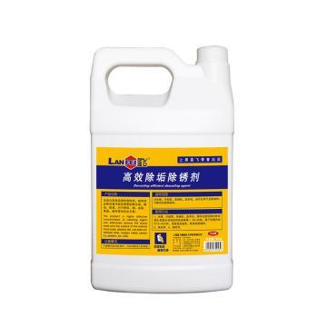 藍飛高效除垢除銹劑,Q048-1 單位:桶