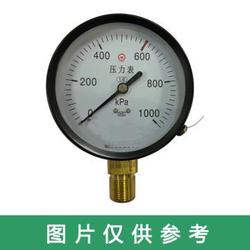 8113820上仪 压力表,YB-YL930 含检验
