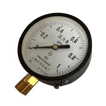 上海天川 压力表,Y-100 0-1MPa 精度1.6级