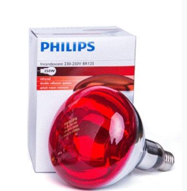 飛利浦 紅外線燈泡,IR 250 RH IR2 250W,E27,10個/箱,單位:箱
