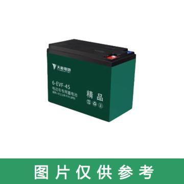 天能 电动车专用蓄电池,6-DZF-45