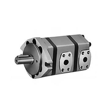 双联齿轮泵,A5045-II