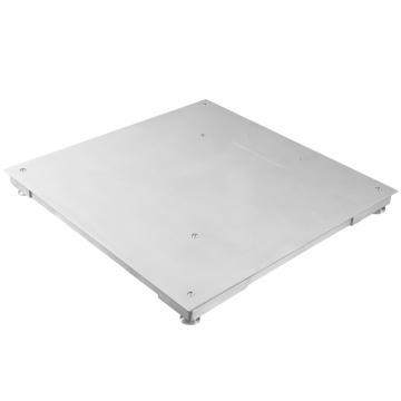 台衡 碳钢小地磅,量程2t,感量1kg,磅台尺寸:1000*1000mm