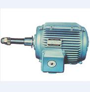 西域推薦 冷卻塔專用電動機YCCL 112M-8