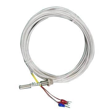安徽德爾信 端面熱電阻,WZPM-201 φ5×20 L=3000mm