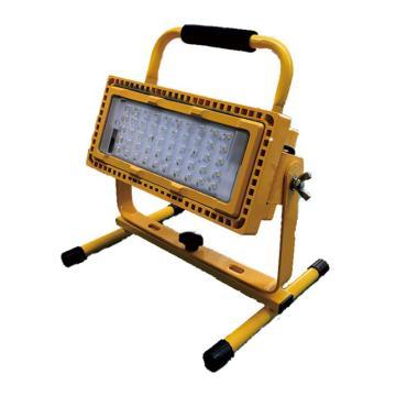 頂火(深圳光明頂) 應急檢修工作燈,5700K,應急6小時,GMD6300-L100