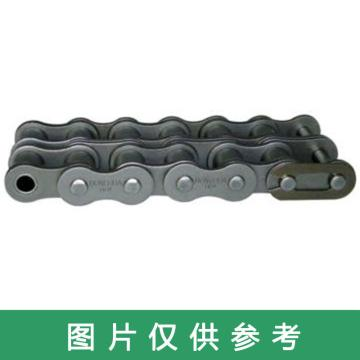 東華自強 A系列鏈條,雙排碳鋼,192節-6M,20A-2*192L
