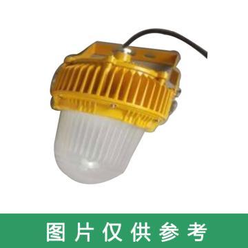 津達 LED免維護防爆平臺燈,KDFB40W,壁掛式安裝,單位:個