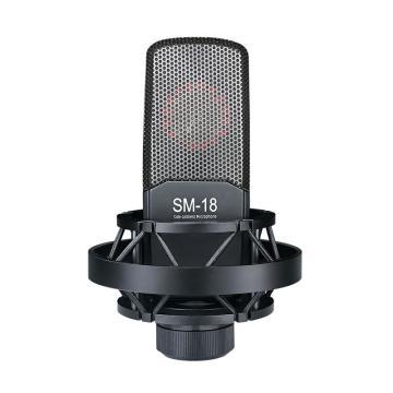 得勝專業錄音麥克風,SM-18(顏色隨機)
