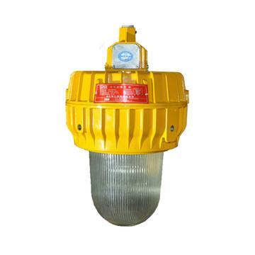 景天照明 内场防爆灯,JT-BFC8140,70W,吸顶式安装,单位:个