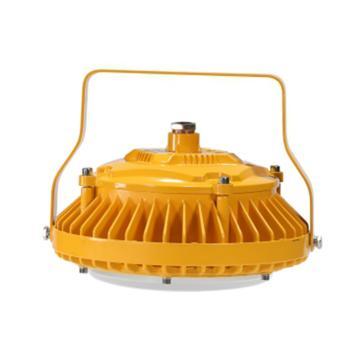 源本技术 LED防爆灯(高顶灯),白光180W,GF8620-180W,U型支架安装,单位:个