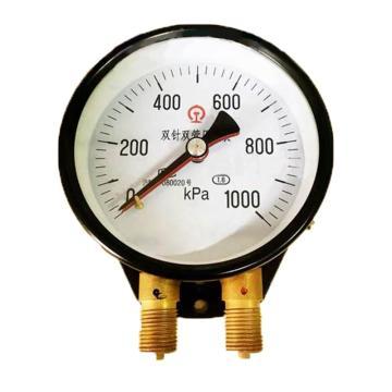 8113820奥特 双针双管表,Y-102 0-0.1Mpa M20*1.5 -40~70℃ 1.6级