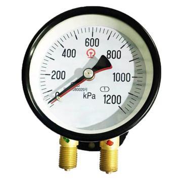 8113820奥特 不锈钢压力表,YZ-60 0-0.1Mpa M20*1.5 -40~70℃ 1.6级