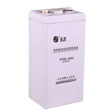 圣阳 蓄电池,GFMD-300C(含辅材,安装)