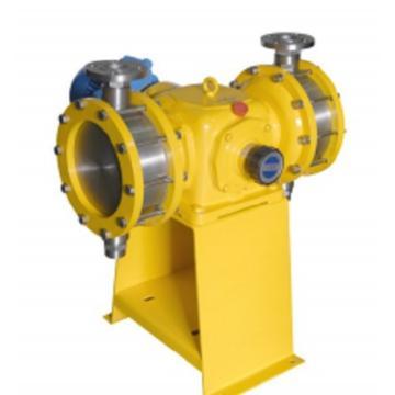 VYRON 计量泵,DJ-D2 3600/0.3