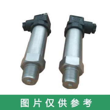 恒慧仪表 压力变送器,DG1300-P