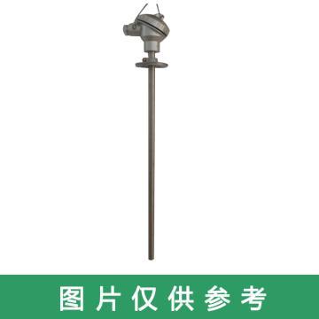恒慧仪表 热电阻,WZP-330 L=800mm DN15
