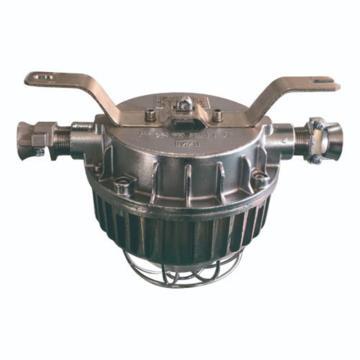 正安 LED支架灯 DGC22/127L(A),煤安证号MAH180170,单位:个