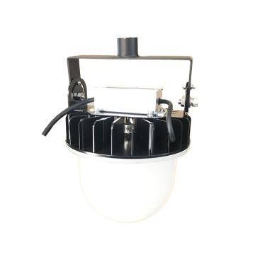 中跃 LED平台灯,ZY9145-80W,吊杆式安装,含1m吊杆,单位:个