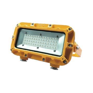 尚为 矿用隔爆LED支架灯,DGC36/127L-36W,5000K,白光,不含安装附件,单位:个