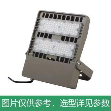 頗爾特 LED三防投光燈,100W,POETAA716-L100,支架安裝,單位:個