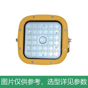 尚为 LED巷道灯,矿用,70W,白光,DGS70/127L(C),含U型支架,单位:个