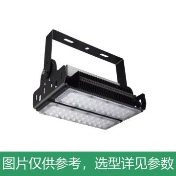 雷發照明 LED泛光燈,100W,中性光,90°配光,LF-FG-100-02S,含U型支架,單位:個