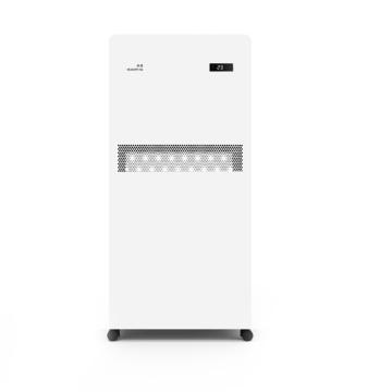 帝源 空氣凈化消毒機,LB620,220V,130W,溶菌酶殺菌/除霾/除醛/自動檢測PM2.5/APP遠控