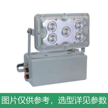 新曙光 LED应急灯,5W,白光,NPE4012,壁装,单位:个