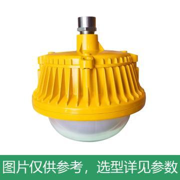 尚为 LED应急平台工作灯,SZSW8135E-Q-50W,吊杆安装,不含吊杆,单位:个