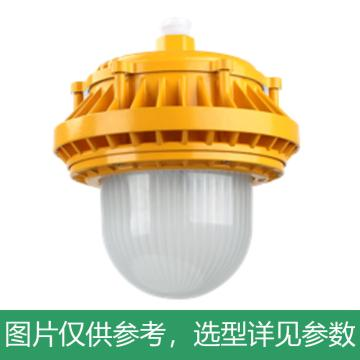 源本技术 LED防爆平台灯,GF8510 功率50W白光,含U型支架,单位:个