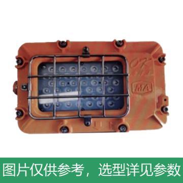 深圳海洋王 DGS35/127L(A)矿用隔爆型LED巷道灯 含网罩,单位:个