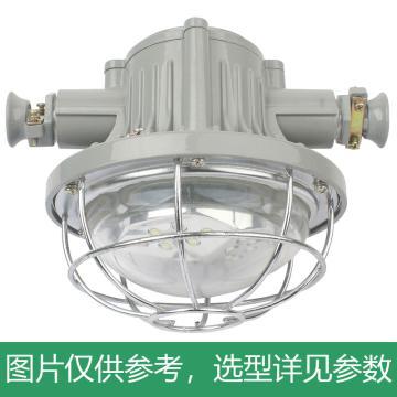 远大矿灯 矿用隔爆型LED巷道灯 DGS24/127L(A),煤安证号:MAH150198,单位:个