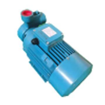 供水泵 CBLK-260/18-U-AUUV (含电机、联轴器、泵头、泵体及卧式机座)