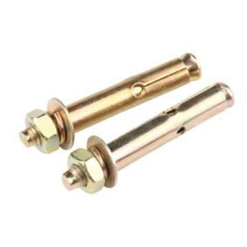 西域推荐 膨胀螺丝,M10*100,镀彩锌,50个/包