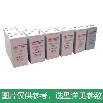 火炬 GFMJ系列固定型控阀密封式胶体蓄电池 2V/2500Ah,GFMJ-2500