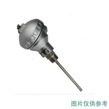 南派克 熱電阻,NPK-PT-20605