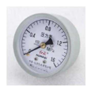 紅旗 壓力表,1.6Mpa YZ-100