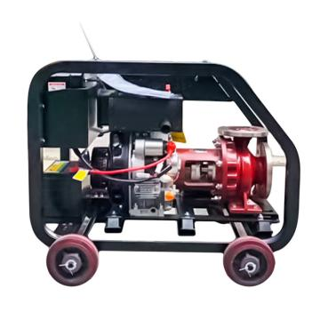伊藤動力 柴油酸堿泵YT65-50不銹鋼