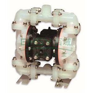 """威尔顿/WILDEN P.025/PPPPP/WFS/TF/PWF 1/4""""非金属壳体气动隔膜泵"""