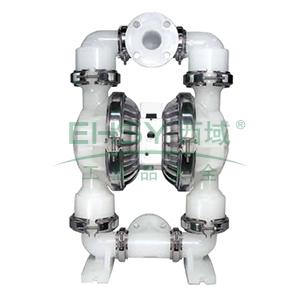 """威尔顿/wilden P2/PKPPP/TNU/TF/PTV/0400 1""""非金属壳体气动隔膜泵"""