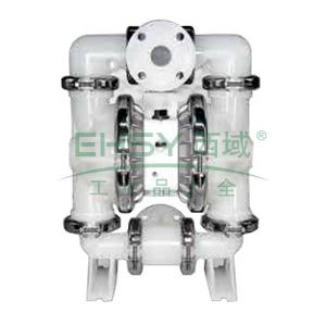 """威尔顿/wilden P8/PKAPP/TNU/TF/PTV 2""""非金属壳体气动隔膜泵"""