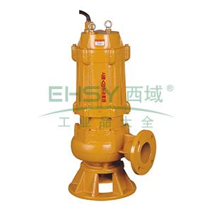 人民水泵/SRM JYWQ25-24-3 JYWQ系列自动搅匀潜水排污泵