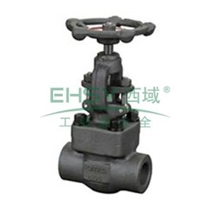 耐立/SNL 承插焊波纹管截止阀;WJ61W-16P DN15(304) 波纹管截止阀