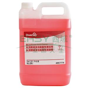 洁胜诺多功能酸性清洁剂, 2 x 5L
