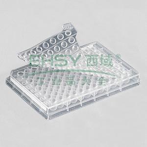 方形储存垫,2ml方形模块,1个/包