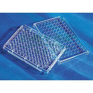 96孔板,透明,圆底,带盖,TC表面,灭菌,1个/包