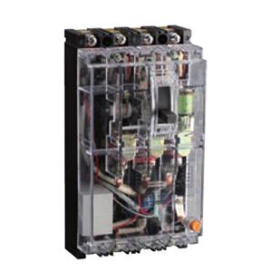 德力西 塑壳漏电断路器,DZ15LE-100T 4901 100A 50mA,DZ15LE100T1004W