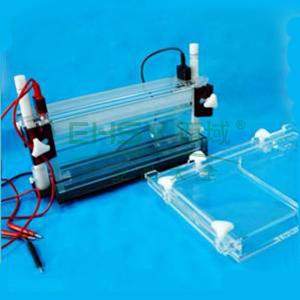 DYCZ-20G型DNA序列分析电泳仪,六一