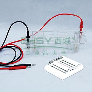 DYCP-32B型琼脂糖水平电泳仪(中号),六一